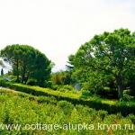 Воронцовский парк Алупка отдых